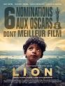 Photo fiche lion