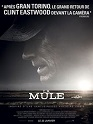 Photo fiche the mule
