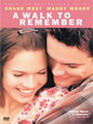 Photo critique A walk to remember